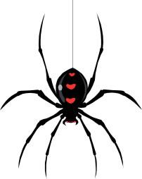 itsy-bitsy-spider-rhyme